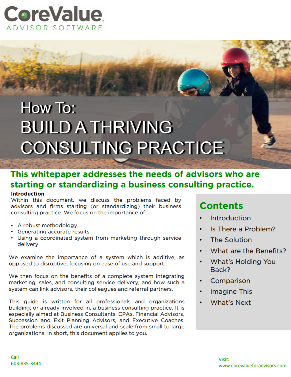 Building a Thriving Consulting Practice